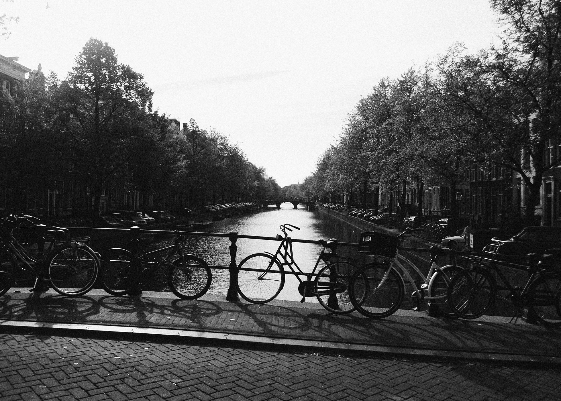 Amsterdam, I Love You